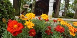 Hotel Cabanas Jardim de Flores - Foto 5