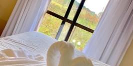 Garden Canela Hotel - Foto 6